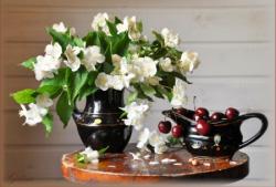 手机版伟德bv客户端桌摆放植物44